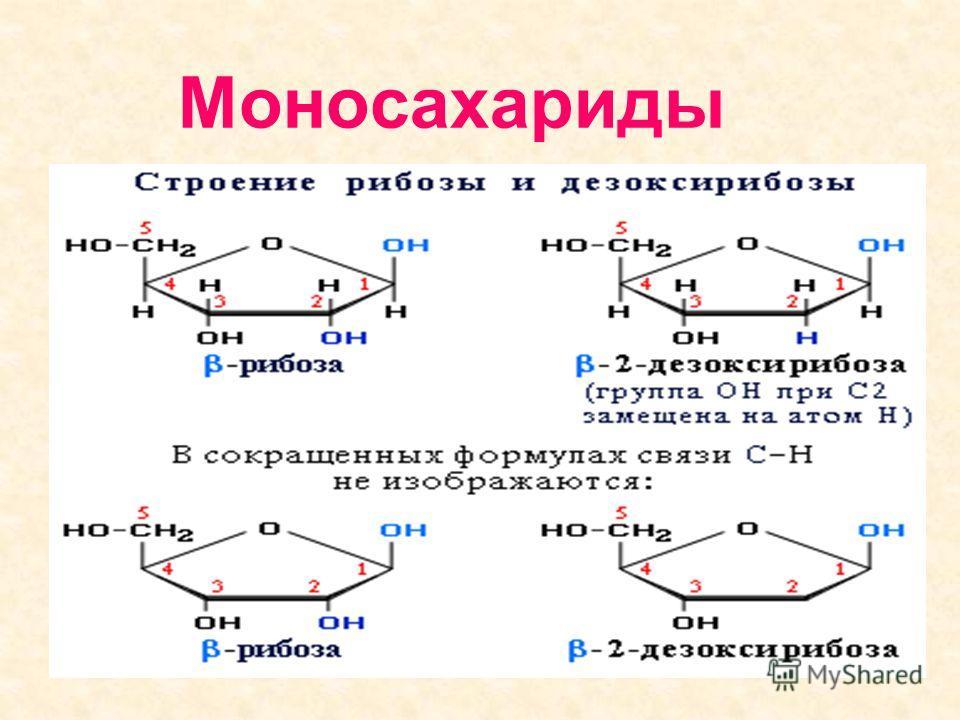 Классификация углеводов Углеводы Простые (моносахариды) Сложные Олигосаха- риды Поли- сахариды Пентозы Гексозы рибоза дезоксирибоза глюкоза фруктоза крахмал гликоген Клетчатка (целлюлоза) сахароза