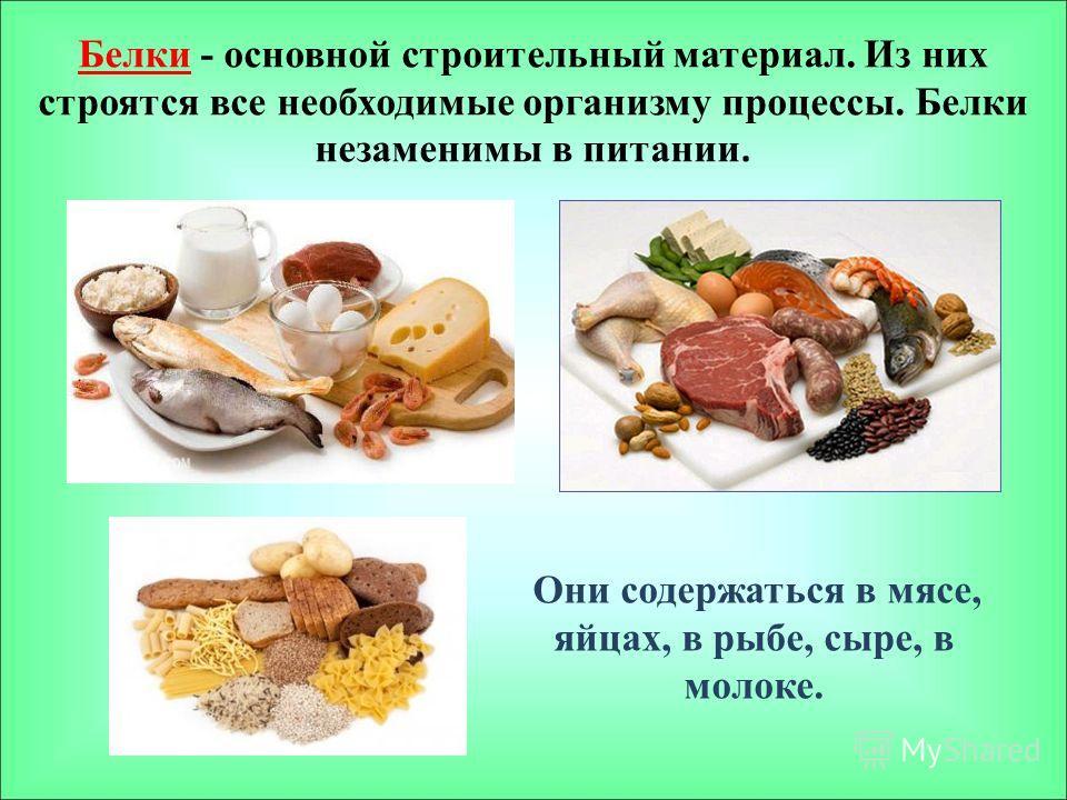 Белки - основной строительный материал. Из них строятся все необходимые организму процессы. Белки незаменимы в питании. Они содержаться в мясе, яйцах, в рыбе, сыре, в молоке.