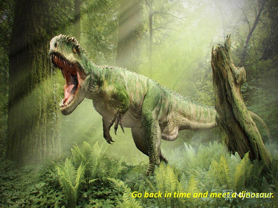 Go back in time and meet a dinosaur.