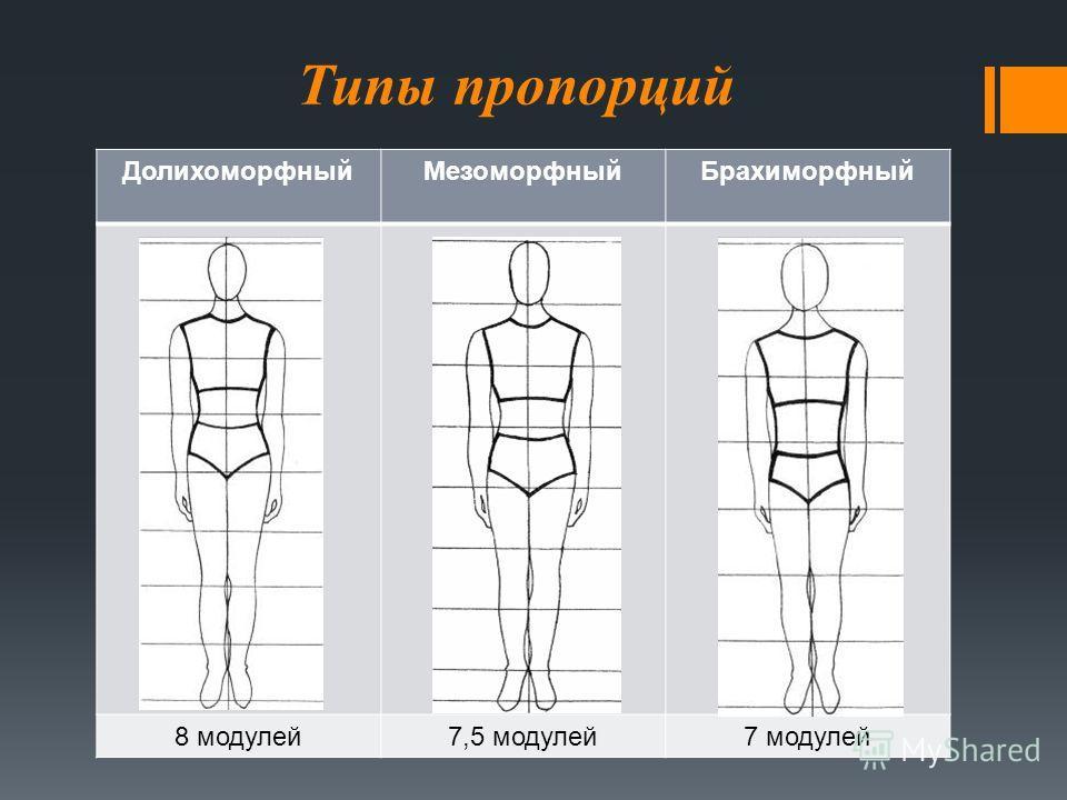 Типы пропорций Долихоморфный МезоморфныйБрахиморфный 8 модулей 7,5 модулей 7 модулей