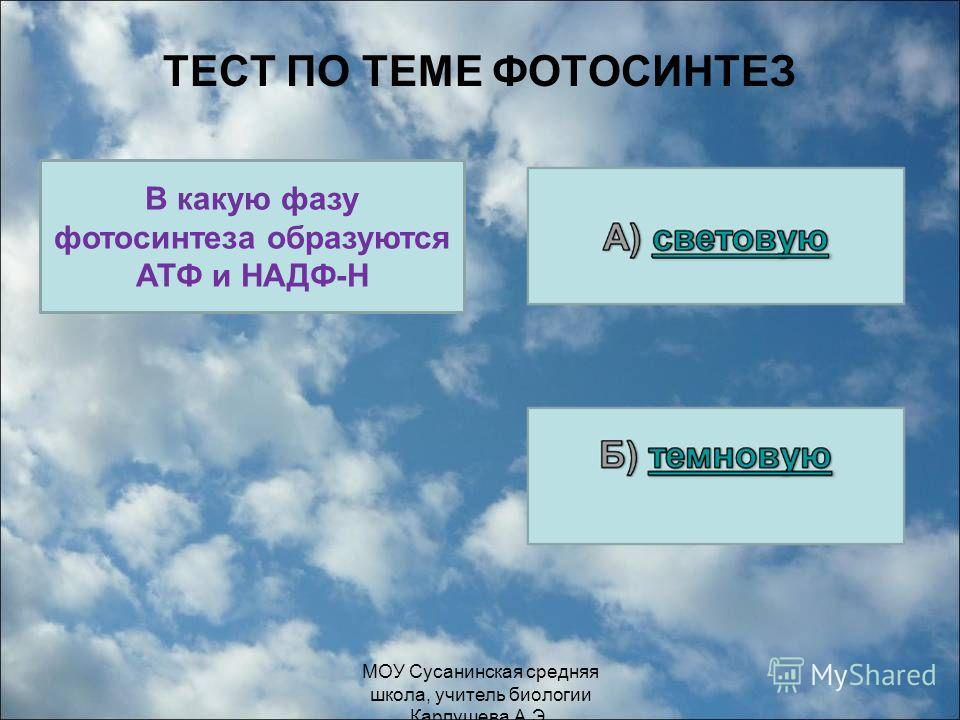 ТЕСТ ПО ТЕМЕ ФОТОСИНТЕЗ В какую фазу фотосинтеза образуются АТФ и НАДФ-Н МОУ Сусанинская средняя школа, учитель биологии Карпушева А.Э.