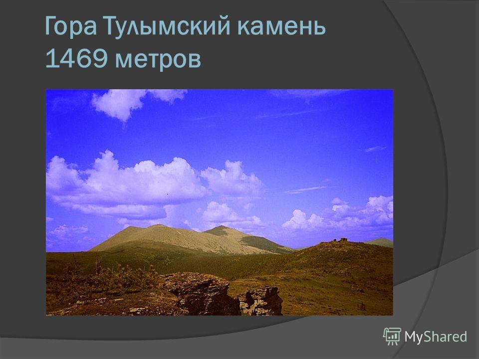 Гора Тулымский камень 1469 метров