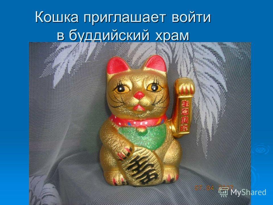 Кошка приглашает войти в буддийский храм