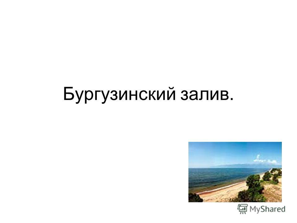Бургузинский залив.