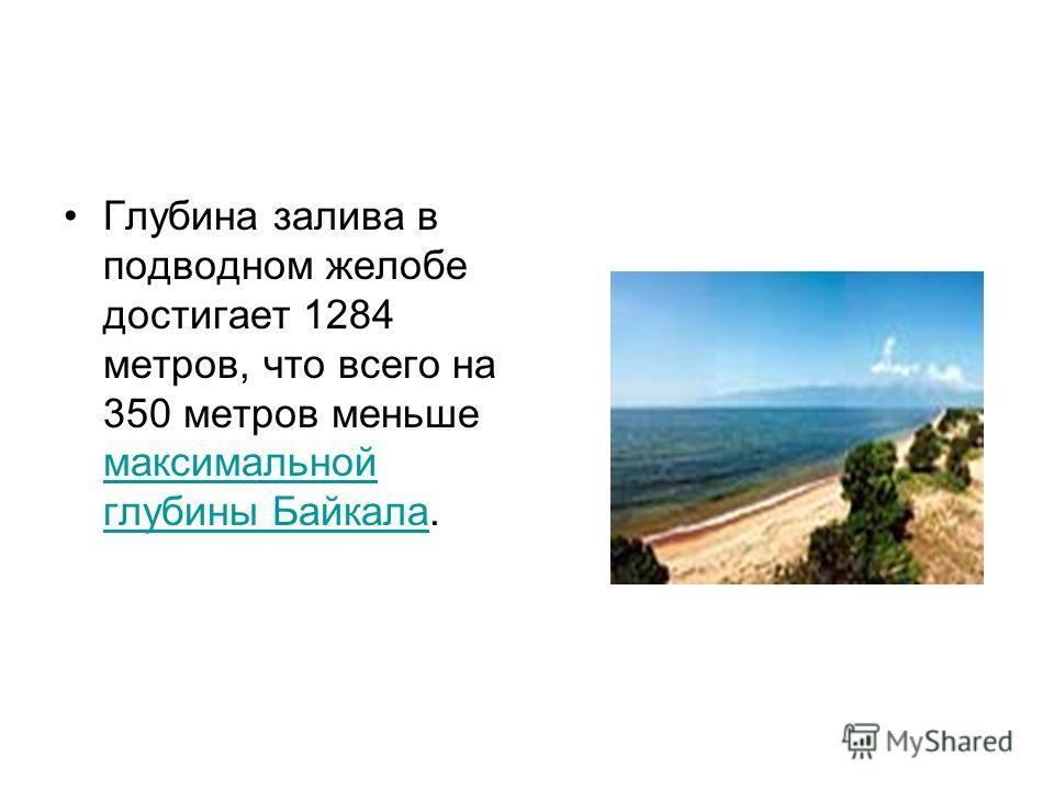 Глубина залива в подводном желобе достигает 1284 метров, что всего на 350 метров меньше максимальной глубины Байкала. максимальной глубины Байкала