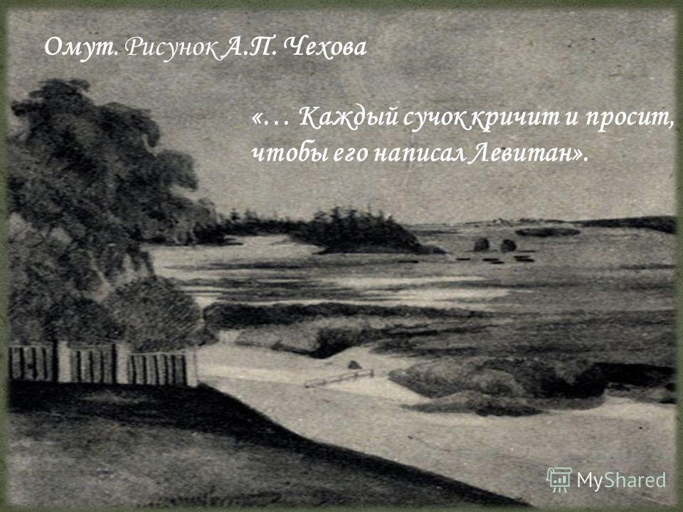Омут. Рисунок А.П. Чехова «… Каждый сучок кричит и просит, чтобы его написал Левитан».