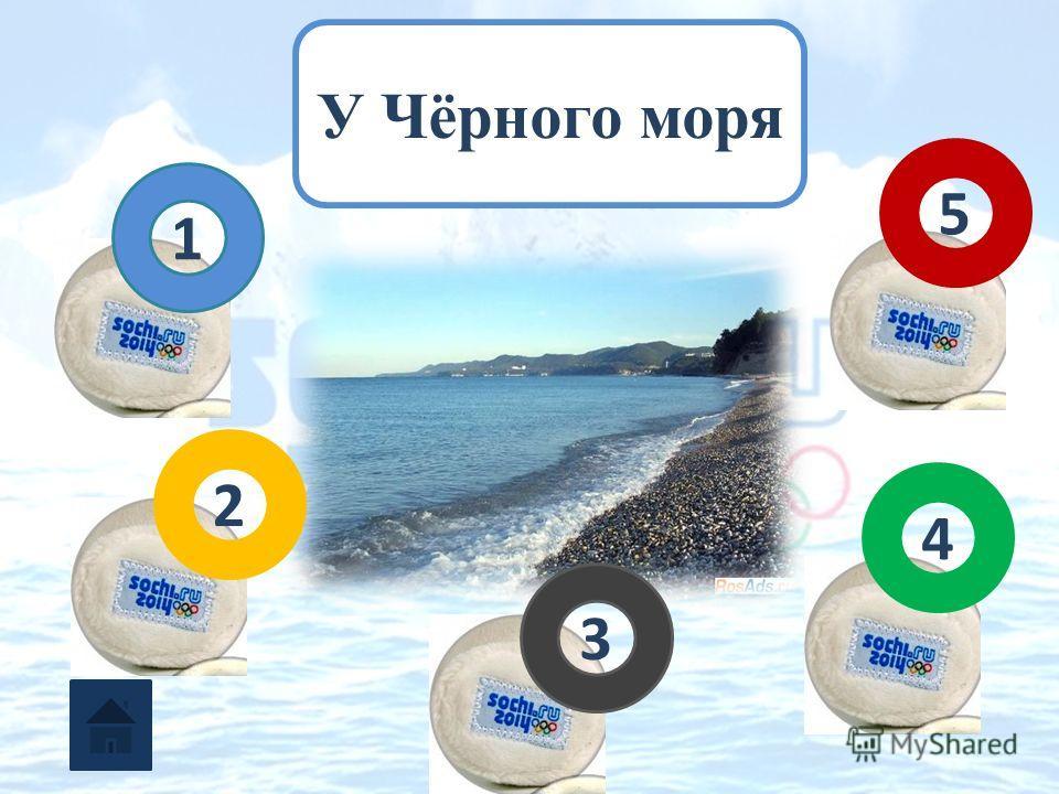 У Чёрного моря 1 2 3 5 4