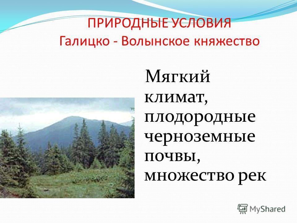 ПРИРОДНЫЕ УСЛОВИЯ Галицко - Волынское княжество Мягкий климат, плодородные черноземные почвы, множество рек