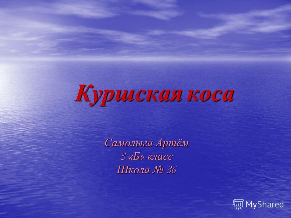 Куршская коса Самолыга Артём 3 « Б » класс Школа 36