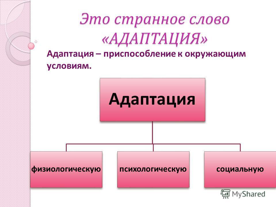 Это странное слово « АДАПТАЦИЯ » Адаптация – приспособление к окружающим условиям. Адаптация физиологическую психологическую социальную
