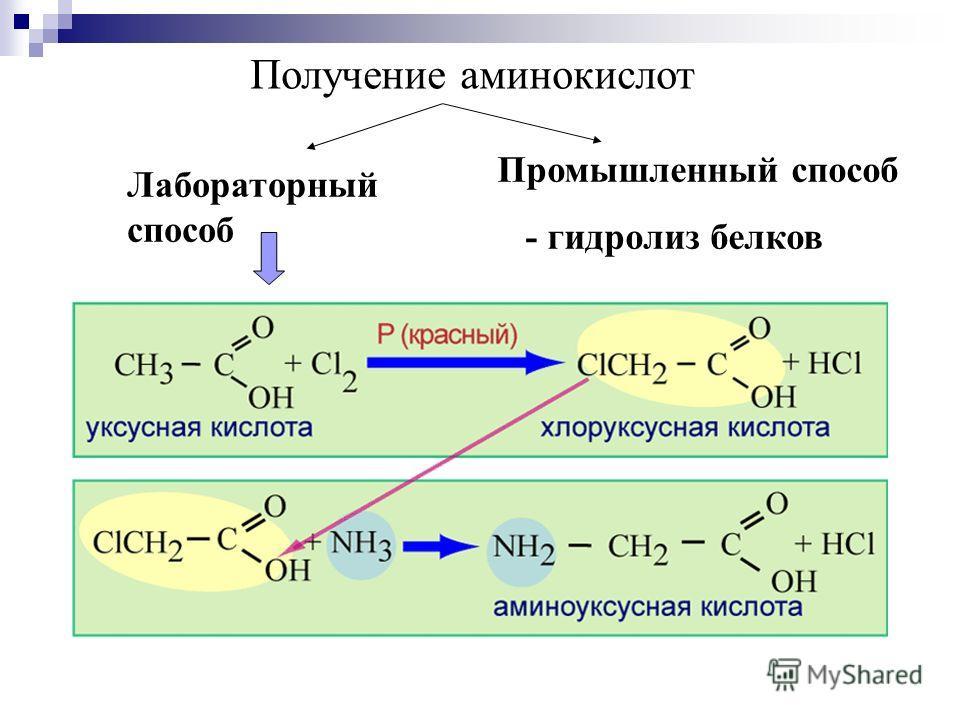 Получение аминокислот Лабораторный способ Промышленный способ - гидролиз белков