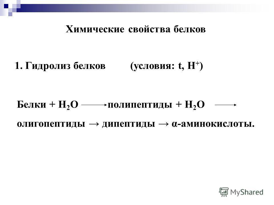 Химические свойства белков 1. Гидролиз белков (условия: t, Н + ) Белки + Н 2 О полипептиды + Н 2 О олигопептиды дипептиды α-аминокислоты.