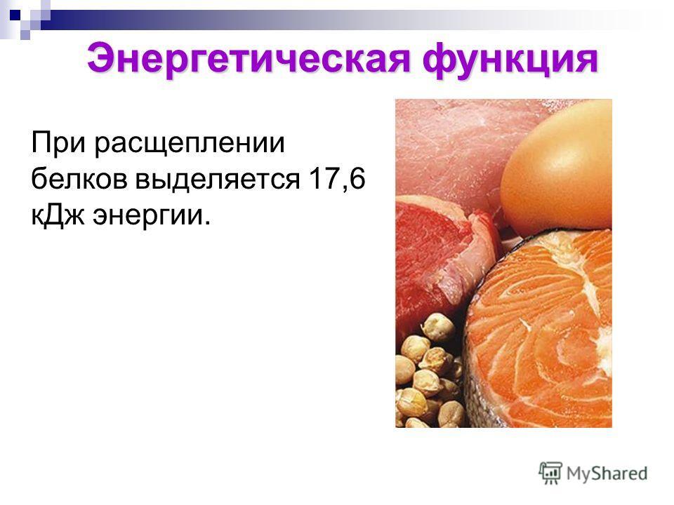 Энергетическая функция При расщеплении белков выделяется 17,6 к Дж энергии.