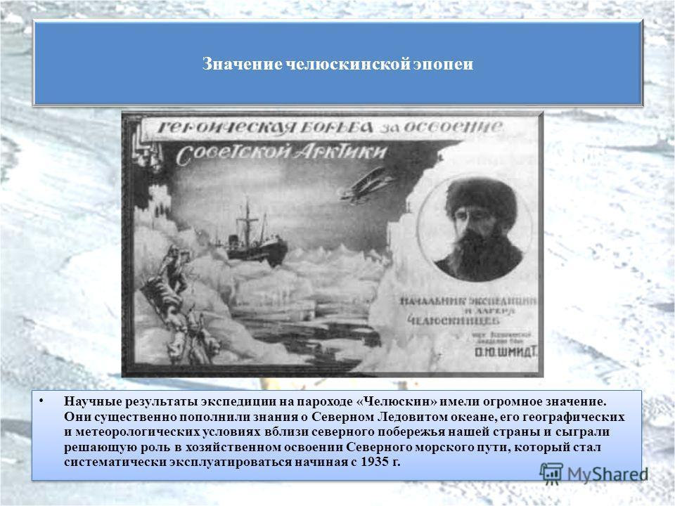 Научные результаты экспедиции на пароходе «Челюскин» имели огромное значение. Они существенно пополнили знания о Северном Ледовитом океане, его географических и метеорологических условиях вблизи северного побережья нашей страны и сыграли решающую рол