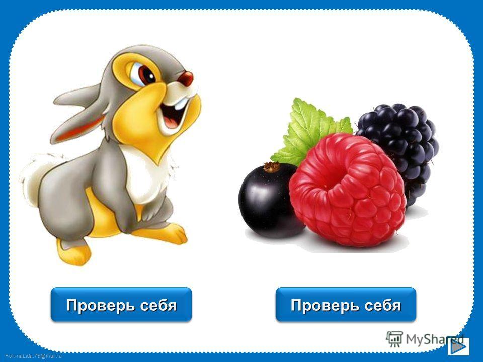 FokinaLida.75@mail.ru пенал Проверь себя стакан Проверь себя