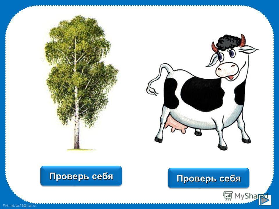 FokinaLida.75@mail.ru заяц Проверь себя ягода Проверь себя