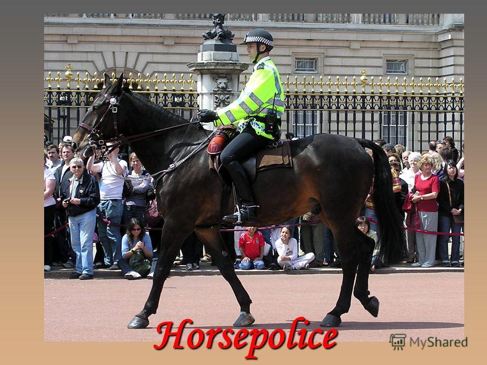 Horsepolice