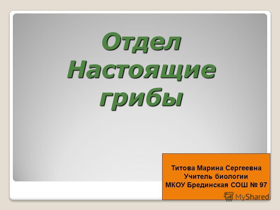Отдел Настоящие грибы Титова Марина Сергеевна Учитель биологии МКОУ Брединская СОШ 97