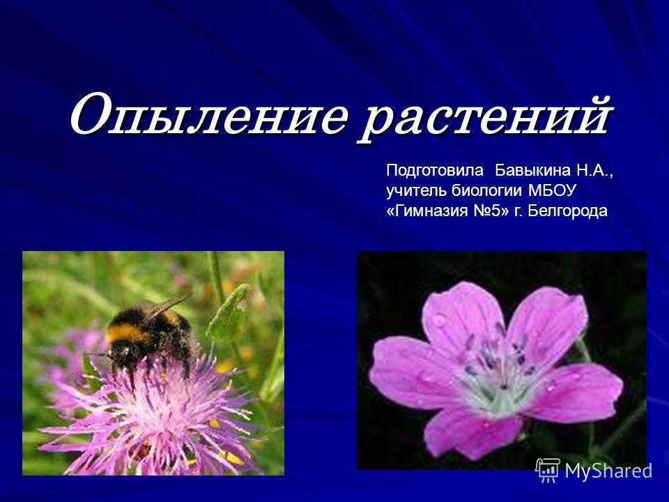 Опыление растений Подготовила Бавыкина Н.А., учитель биологии МБОУ «Гимназия 5» г. Белгорода