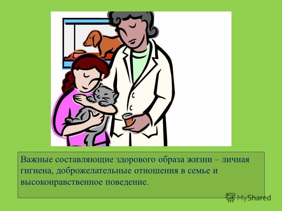 Важные составляющие здорового образа жизни – личная гигиена, доброжелательные отношения в семье и высоконравственное поведение.