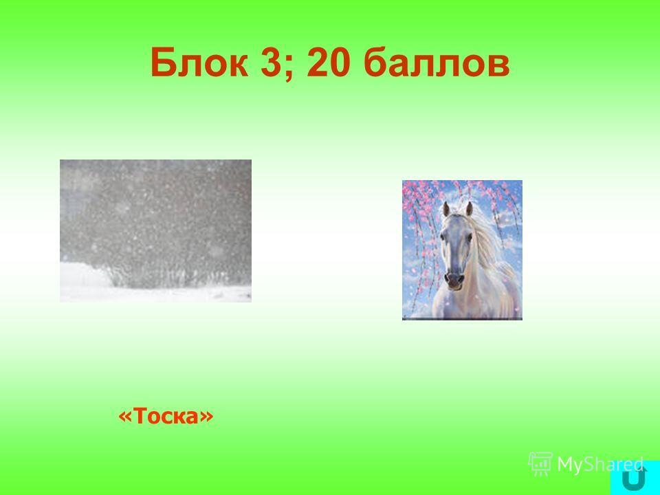 Блок 3; 10 баллов «Хамелеон»