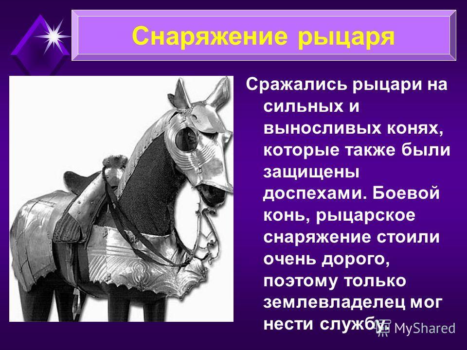 Сражались рыцари на сильных и выносливых конях, которые также были защищены доспехами. Боевой конь, рыцарское снаряжение стоили очень дорого, поэтому только землевладелец мог нести службу. Снаряжение рыцаря