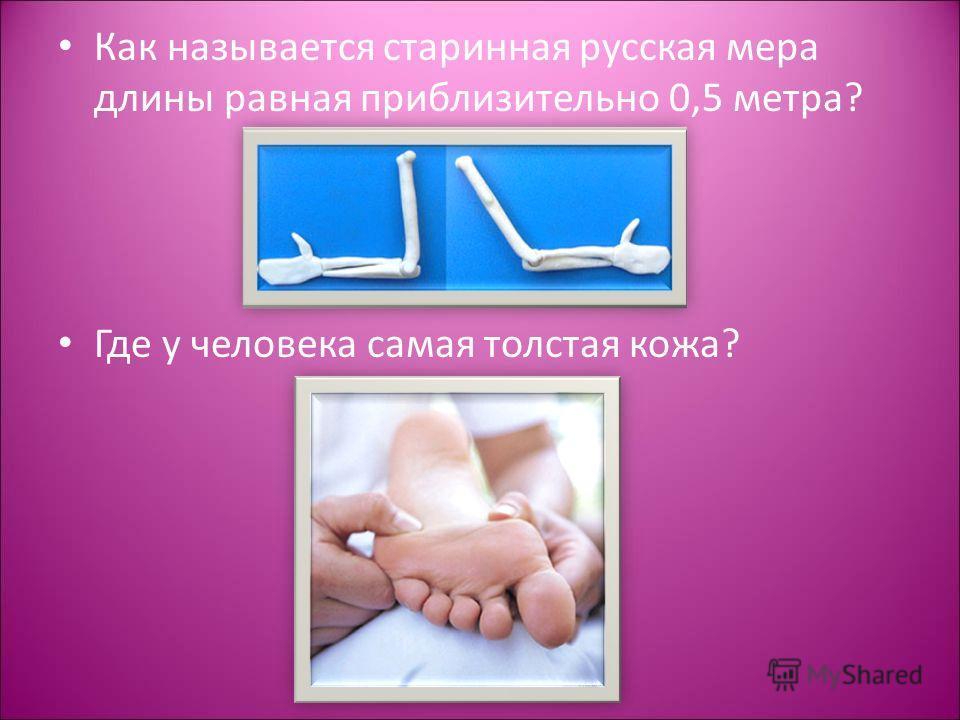 Как называется старинная русская мера длины равная приблизительно 0,5 метра? Где у человека самая толстая кожа?