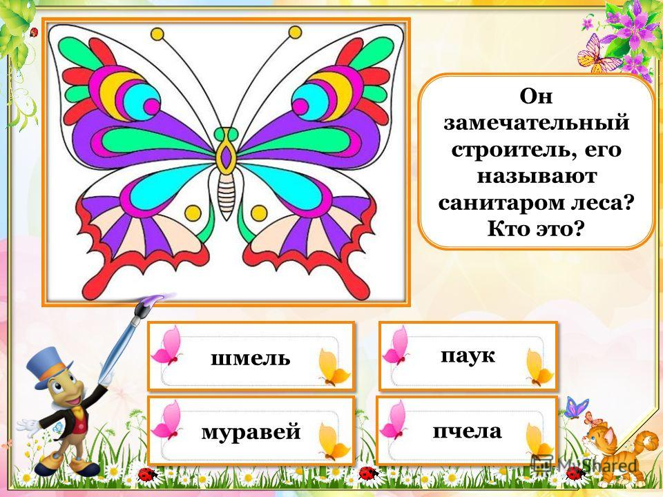 Чем покрыто тело бабочки? кожей чешуйками пыльцой