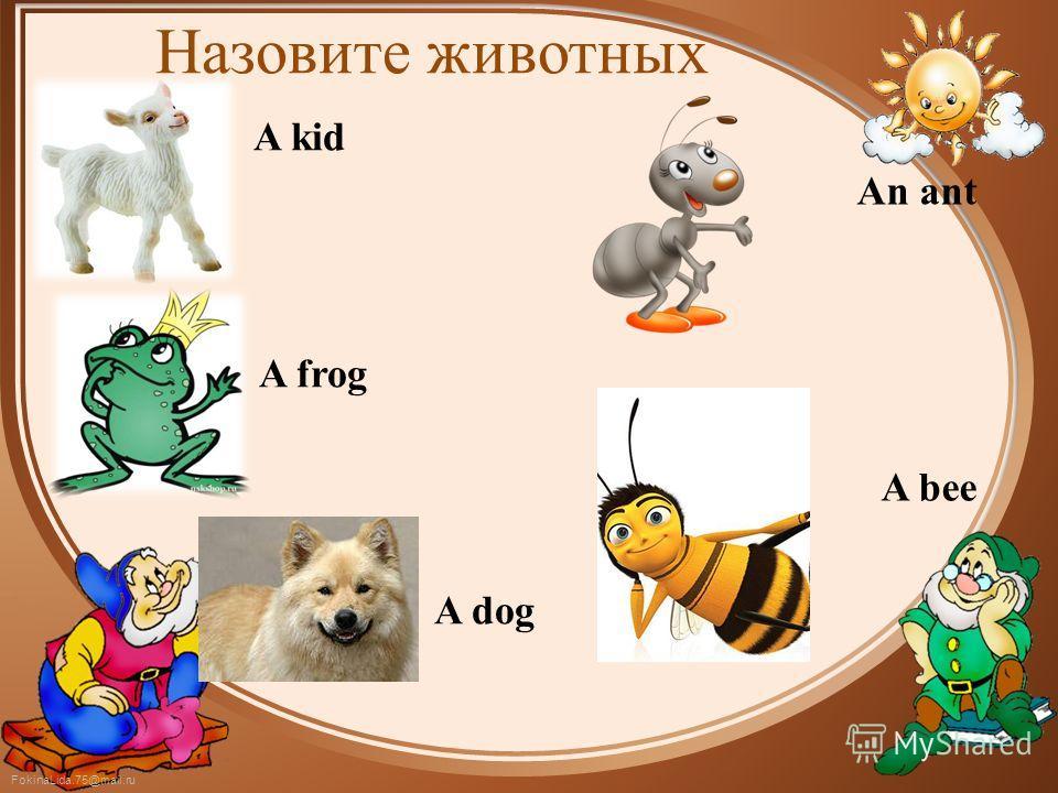 FokinaLida.75@mail.ru Назовите животных A kid A frog A dog An ant A bee