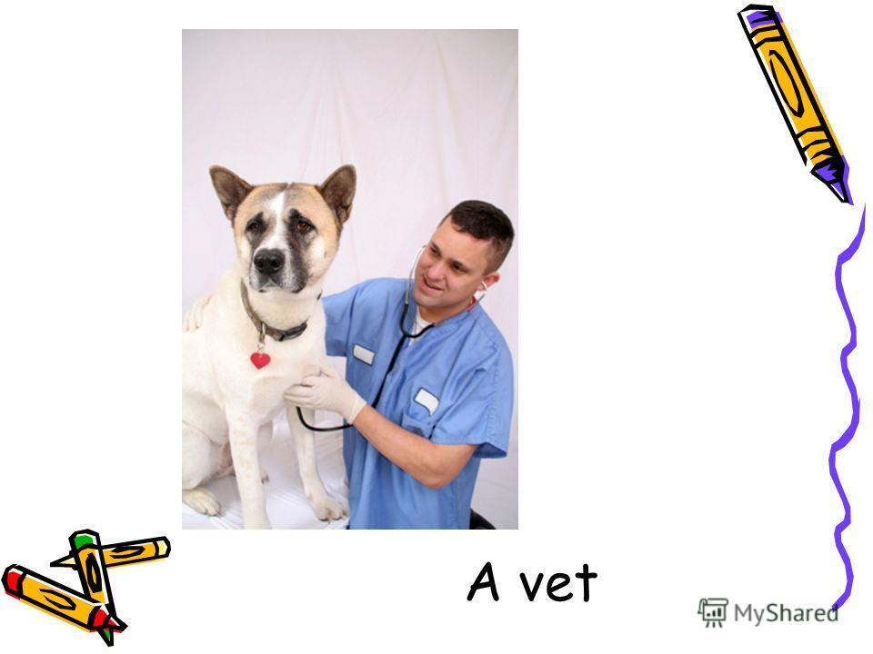 A vet