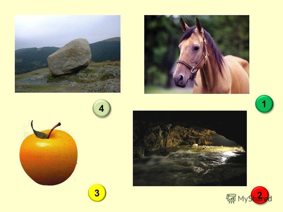 Кануть в Лету Троянский конь Сизифов труд 2 2 1 1 3 Яблоко раздора 4 4