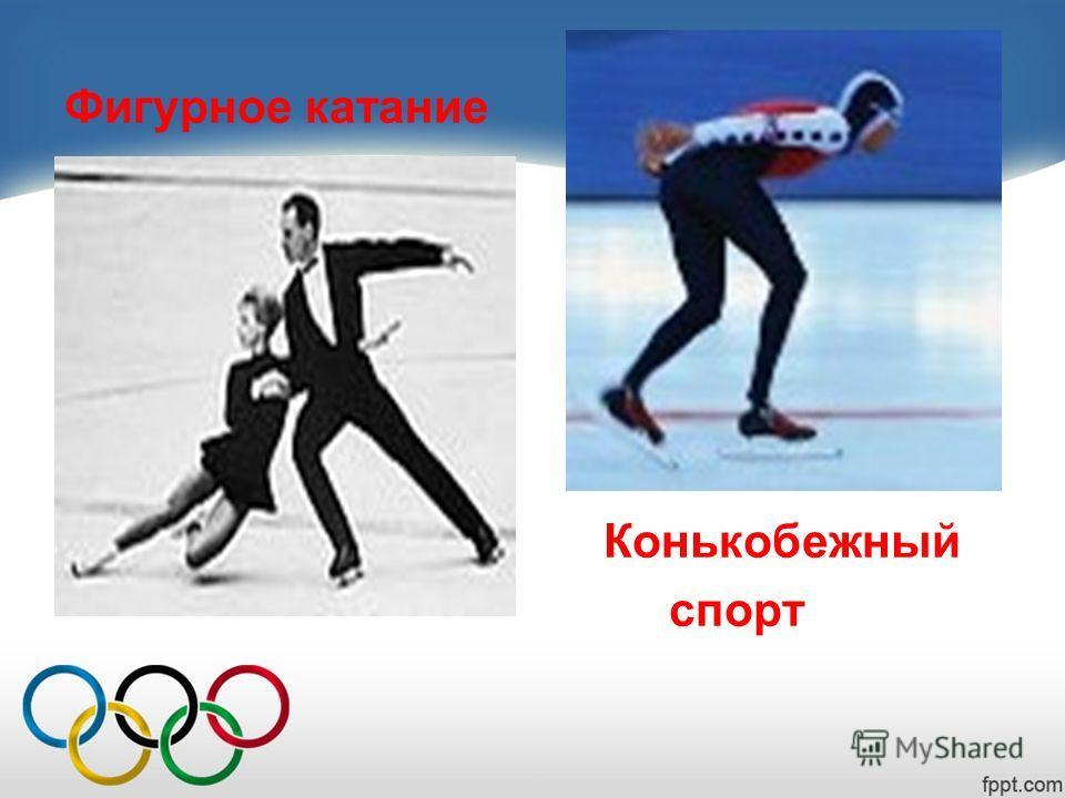 Фигурное катание Конькобежный спорт