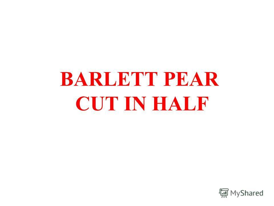 BARLETT PEAR CUT IN HALF
