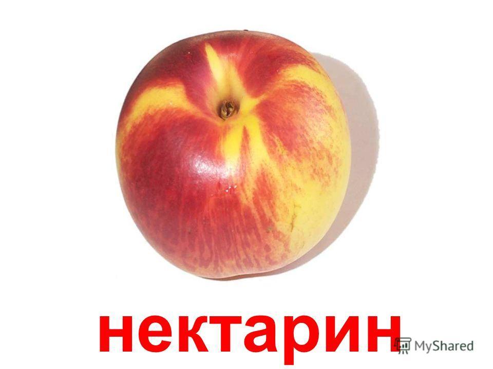 абрикосы Абрикосы