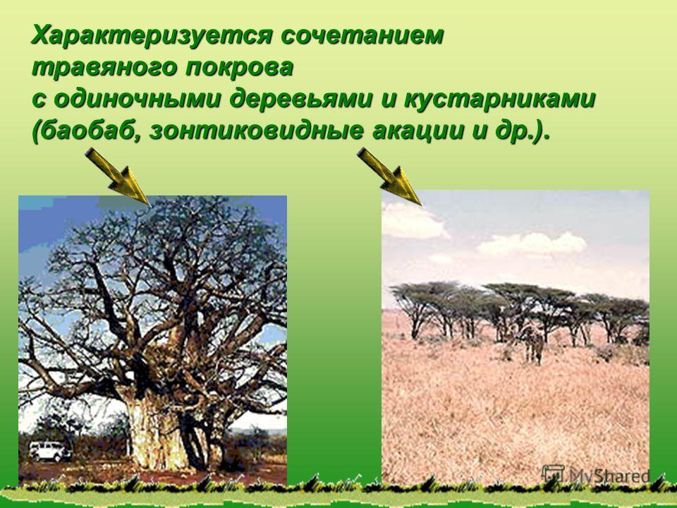 Характеризуется сочетанием травяного покрова с одиночными деревьями и кустарниками (баобаб, зонтиковидные акации и др.).