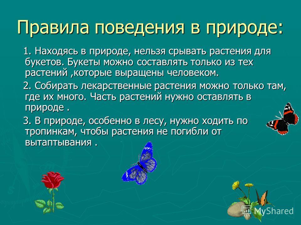 Правила поведения в природе: 1. Находясь в природе, нельзя срывать растения для букетов. Букеты можно составлять только из тех растений,которые выращены человеком. 1. Находясь в природе, нельзя срывать растения для букетов. Букеты можно составлять то
