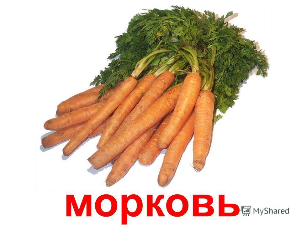картофель Картофель