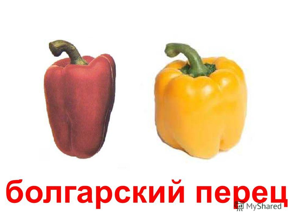 болгарский перец Болгарский перец