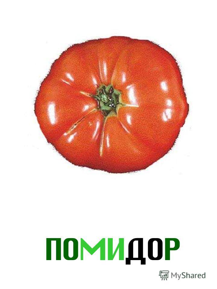 ПОМИДОР Помидор