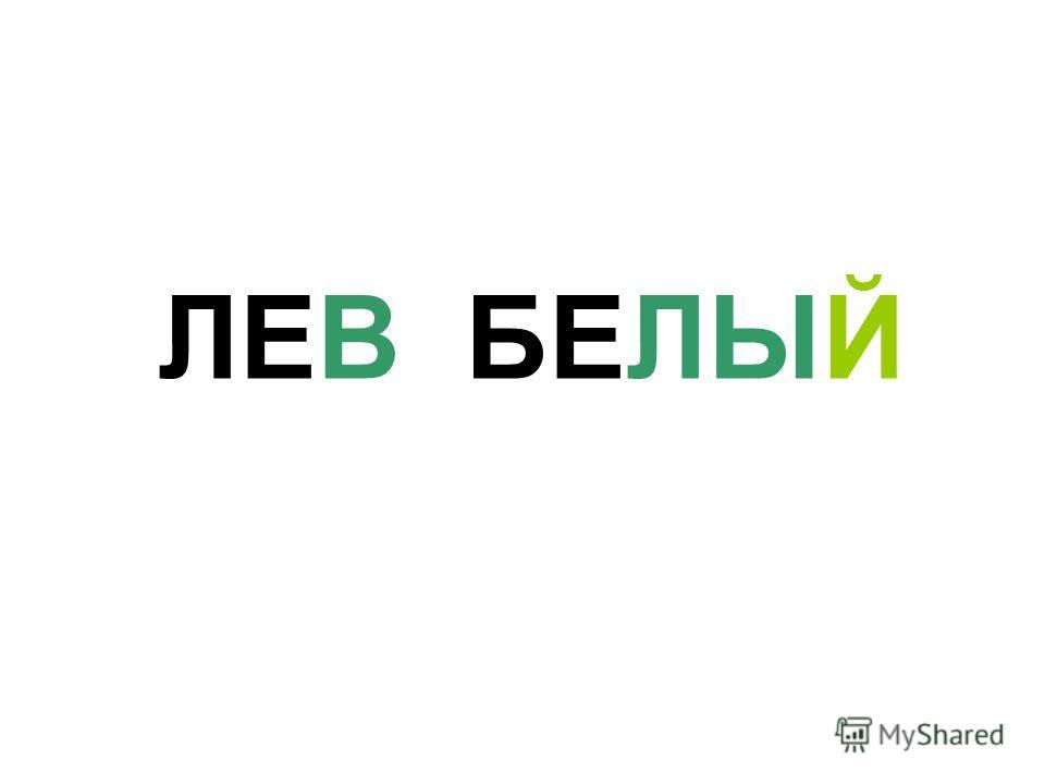 ЛЕВ БЕЛЫЙ