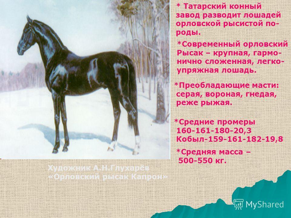 * Татарский конный завод разводит лошадей орловской рысистой по- роды. *Современный орловский Рысак – крупная, гармонично сложенная, легко- упряжная лошадь. *Преобладающие масти: серая, вороная, гнедая, реже рыжая. *Средние промеры 160-161-180-20,3 К