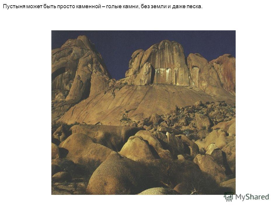Пустыня может быть просто каменной – голые камни, без земли и даже песка.