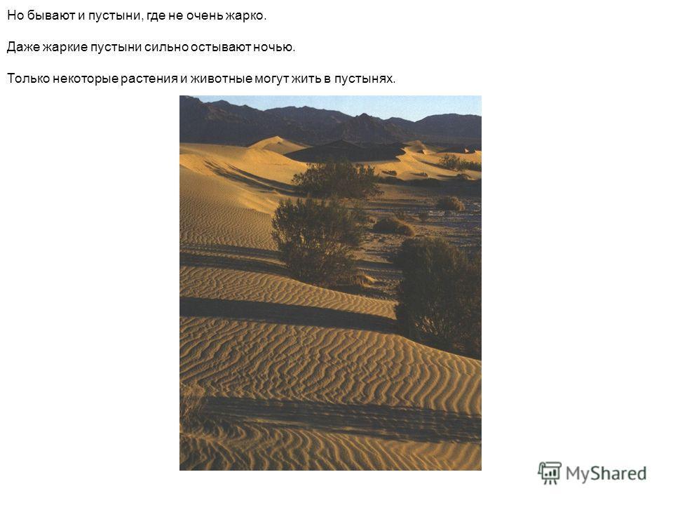 Но бывают и пустыни, где не очень жарко. Даже жаркие пустыни сильно остывают ночью. Только некоторые растения и животные могут жить в пустынях.