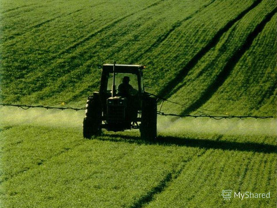 Этот трактор опрыскивает поля, чтобы растения росли здоровыми.