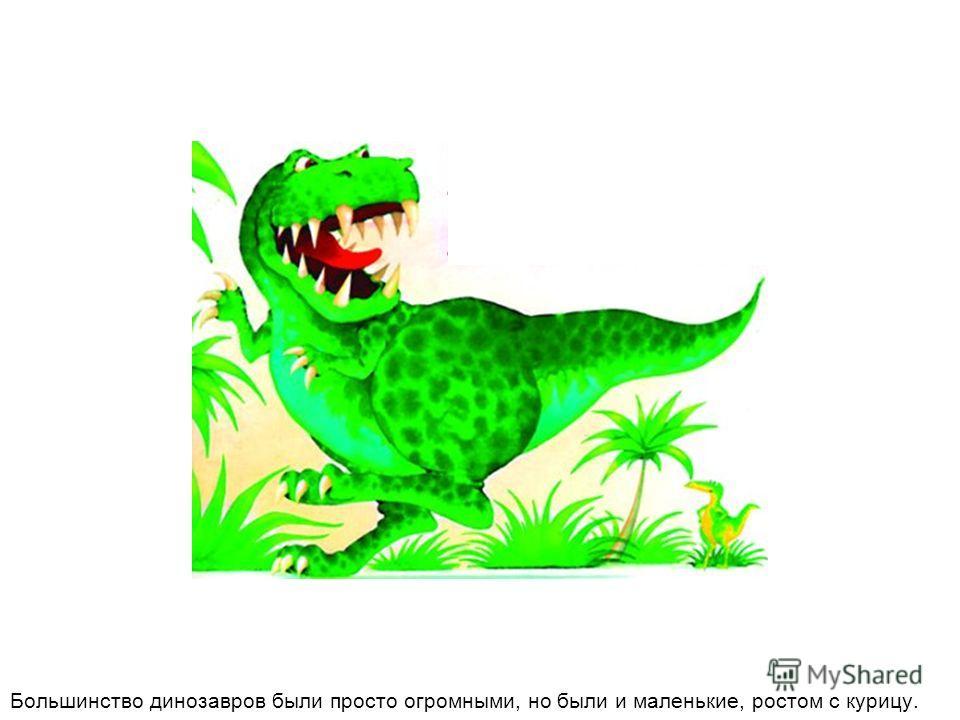 Большинство динозавров были просто огромными, но были и маленькие, ростом с курицу.