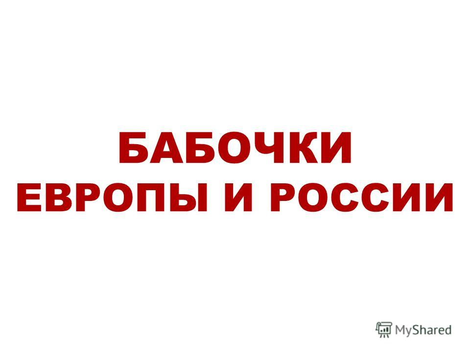 БАБОЧКИ ЕВРОПЫ И РОССИИ