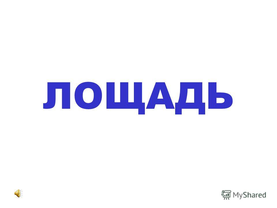 ОСЛЁНОК