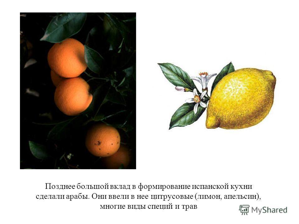 Позднее большой вклад в формирование испанской кухни сделали арабы. Они ввели в нее цитрусовые (лимон, апельсин), многие виды специй и трав