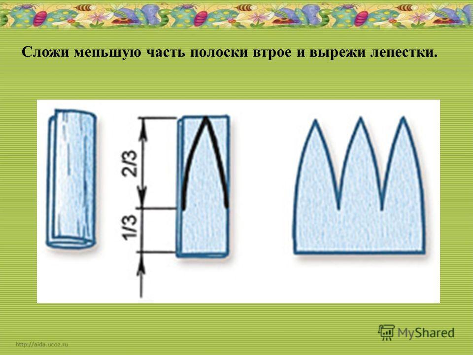 Сложи меньшую часть полоски втрое и вырежи лепестки.