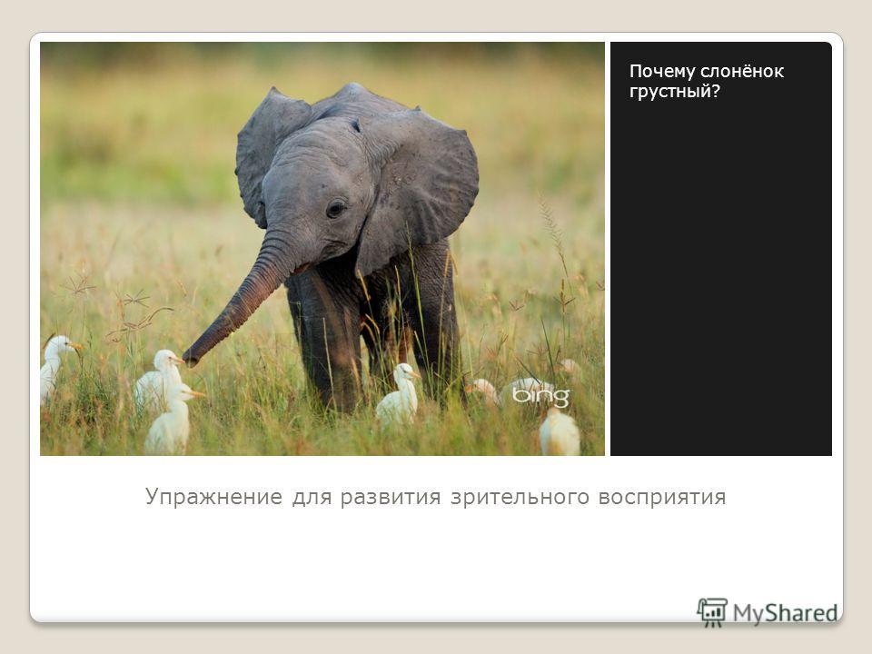 Упражнение для развития зрительного восприятия Почему слонёнок грустный?